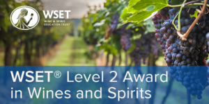 Wset level 2 exam questions